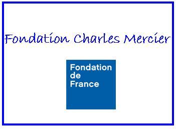 fondation C Mercier
